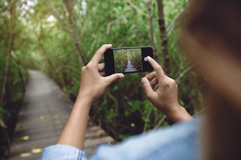 Aparat fotograficzny w telefonach iPhone 7 i 8